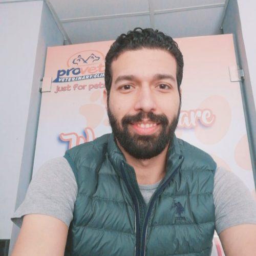 Ahmed Abou bakr